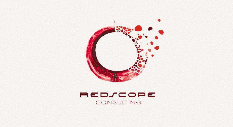 redscope-consulting.com